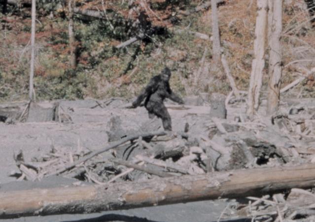 Bigfootappraiser